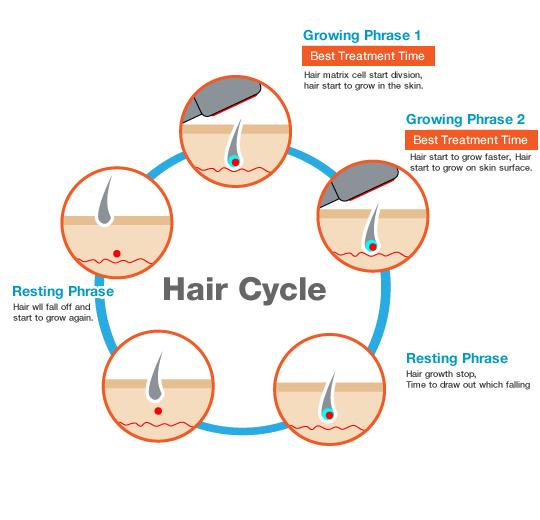 hair_growth